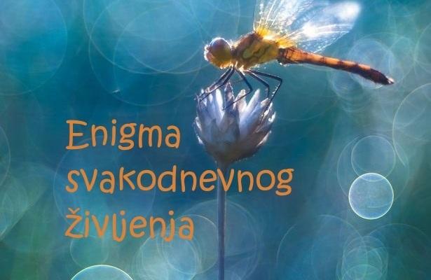 Enigma svakodnevnog življenja